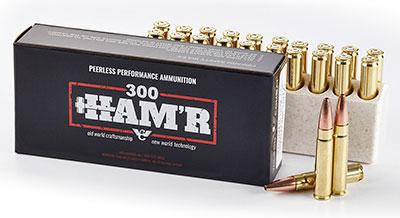 .300 HAM'R
