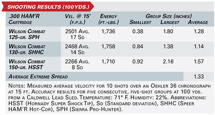 wilson combat protector Series AR shooting results